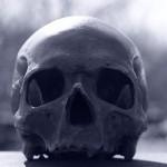 skull-and-crossbones-716488_640